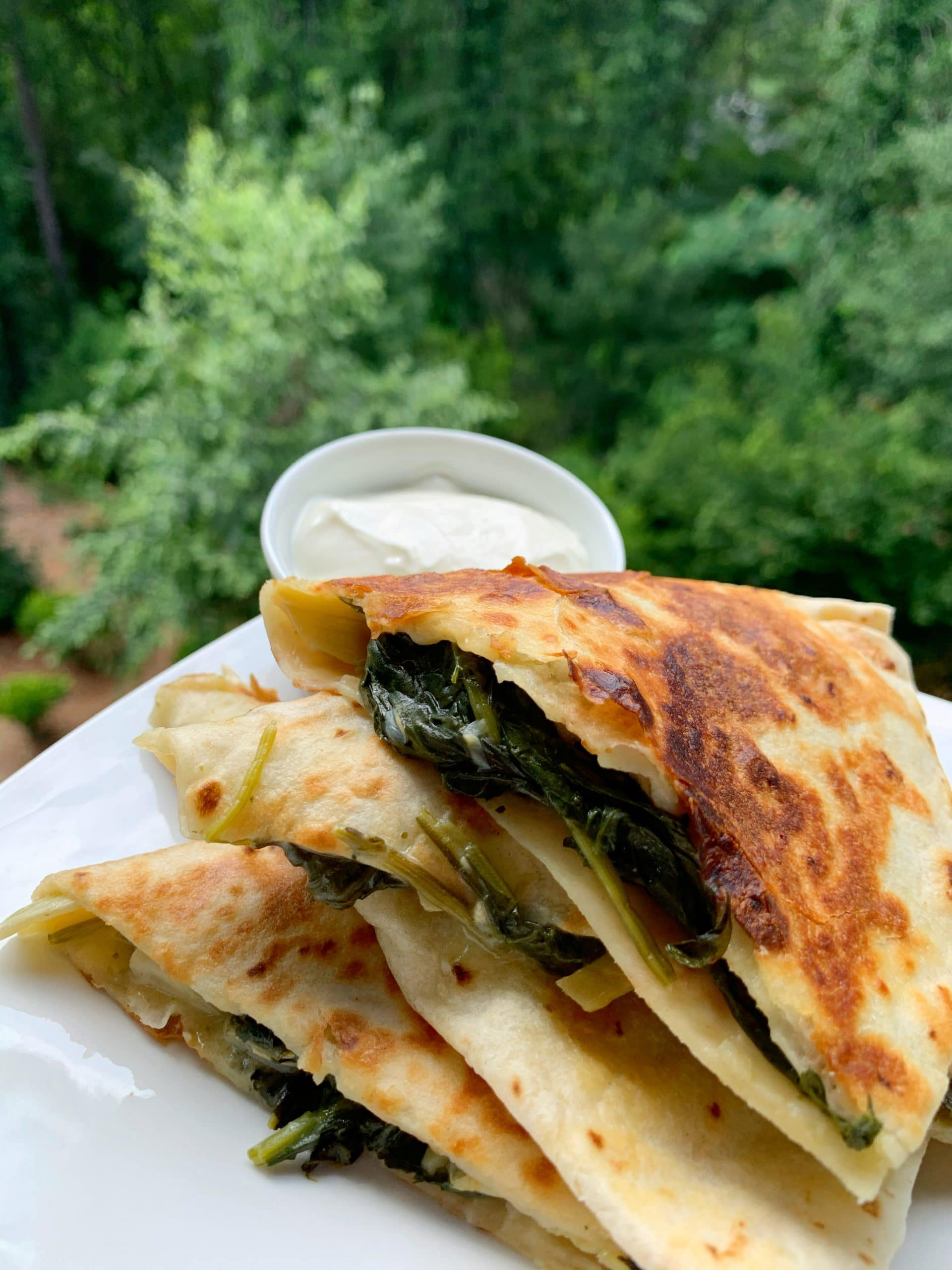 spinach and artichoke dip quesadillas