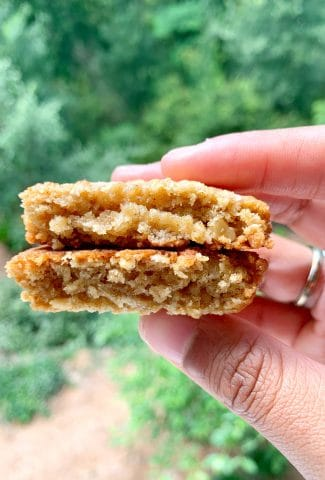 picture of hands holding a chewy oatmeal cookie cookie cut in half, showing the inside
